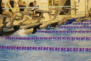 The 100 backstrokers take off