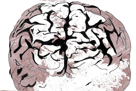 Prevalence of mental illness