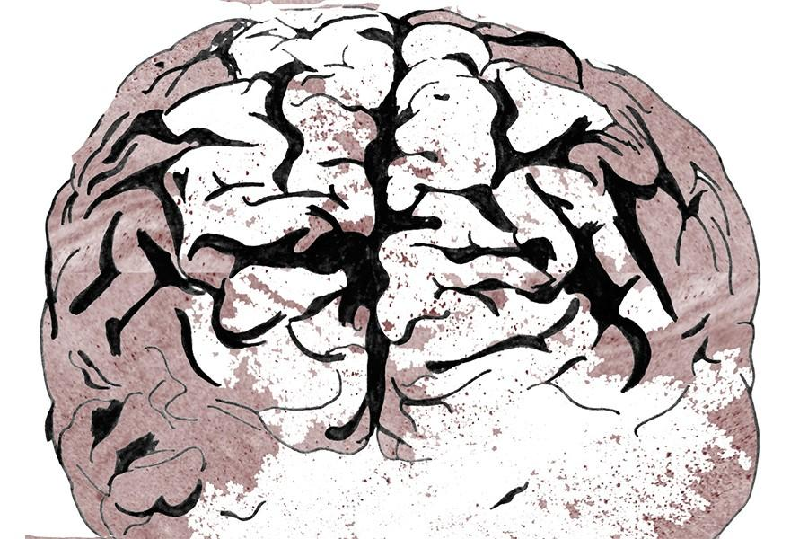 A+drawing+of+the+human+brain%2C+with+some+red-gray+coloring+on+the+edges.