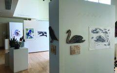 Martha Bennett Gallery debuts bird themed exhibit