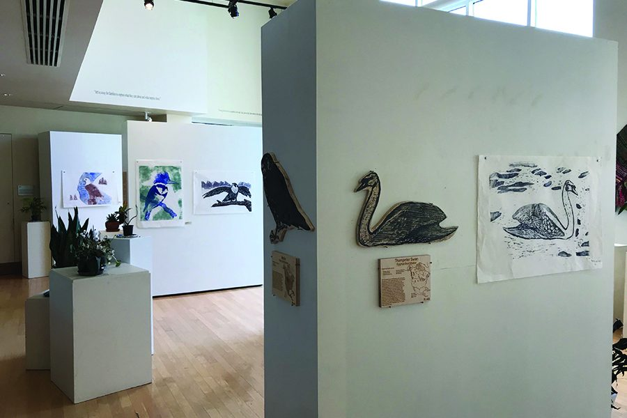 Martha+Bennett+Gallery+debuts+bird+themed+exhibit