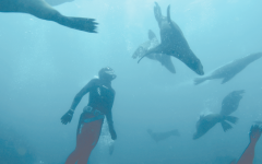 Tripp Markusen '19 Dives Deep