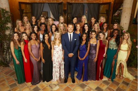 The Bachelor Initiates Amusing Conversations with Fabricated Expectations