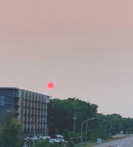 Many saw the red sun that appeared in the sky a few weeks ago, as a result of the California wildfires.