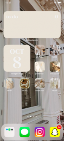 Lillygreen uses a muted colors aesthetic to customize her home screen with the help of the iOS update.