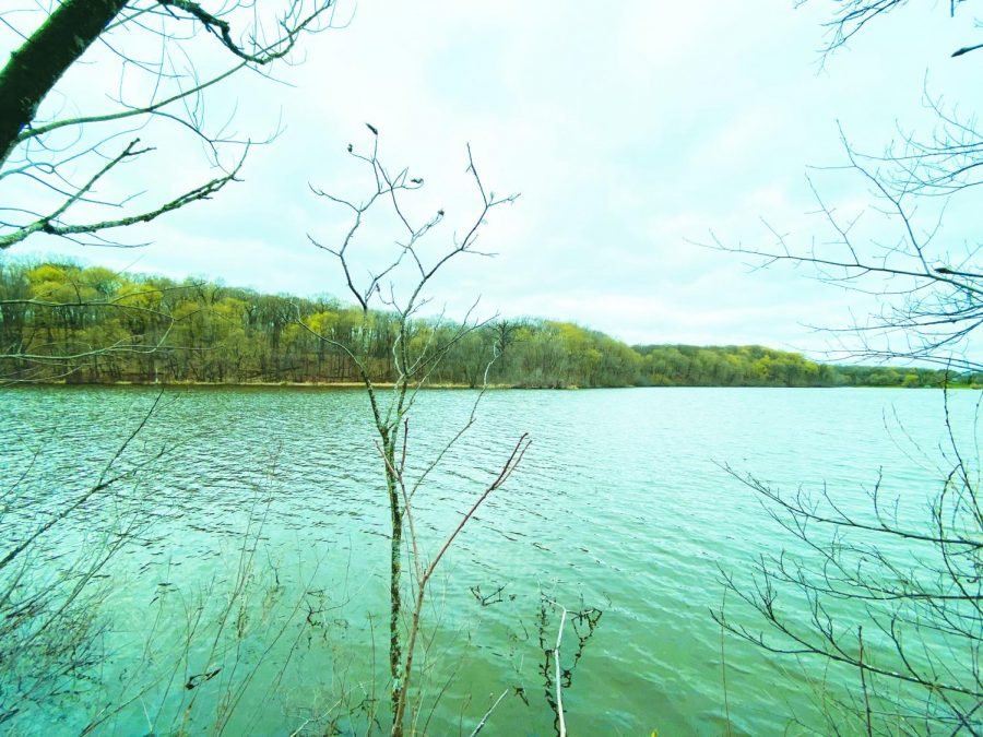 "Pictured above is Wolsfeld Woods Scientific and Natural Area located on Long Lake, MN. In addition to spending time hiking or walking in the wilderness, there are tons of other activities you can do outside. For instance,  Danny Andrade-Vera '23 states, ""Nature is inspirational, so go do all your homework outside!"""