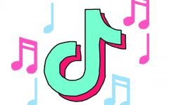 TikTok Audios, Trends Give Small Artists Platforms, Recognition